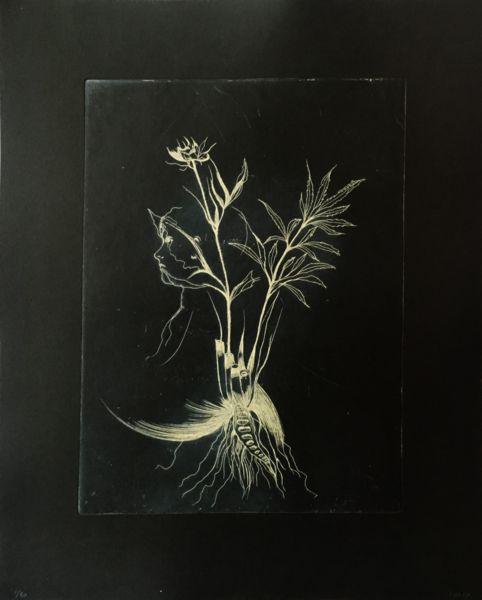 Cathrine Raben Davidsen      Format 44 x 55 cm, Oplag 30      Kobbertryk