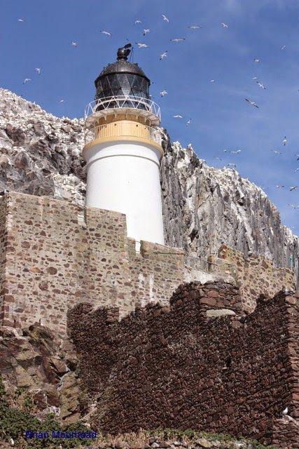 Bass Rock Lighthouse ڿڰۣ✿