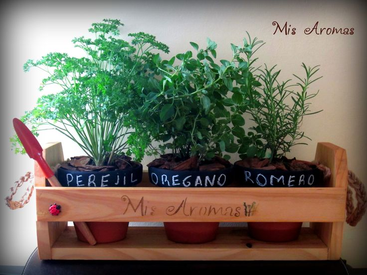 1000 images about kits de especies arom ticas on - Macetas para plantas aromaticas ...