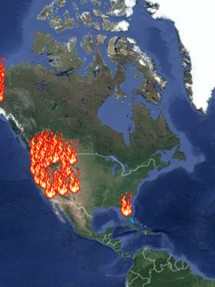 Best MAPS Images On Pinterest Maps British People And - Bird map of the us crows