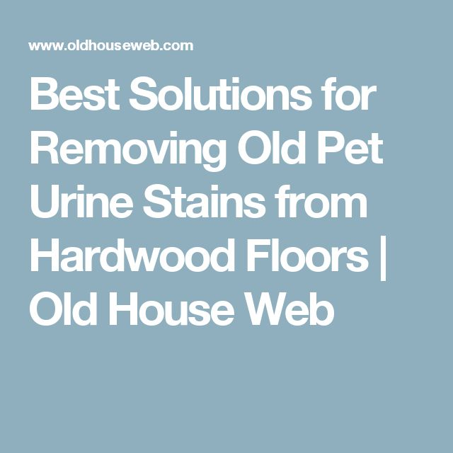 Best Solutions for Removing Old Pet Urine Stains from Hardwood Floors | Old House Web