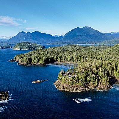 Going Wild on Vancouver Island, British Columbia - 11 Vacations that Will Change Your Life - Coastal Living