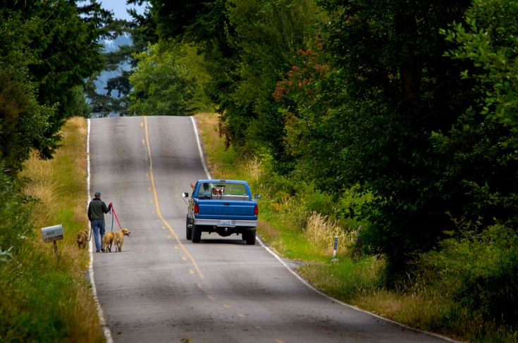 5 fun things (and that's about it) on laid-back Lummi Island .