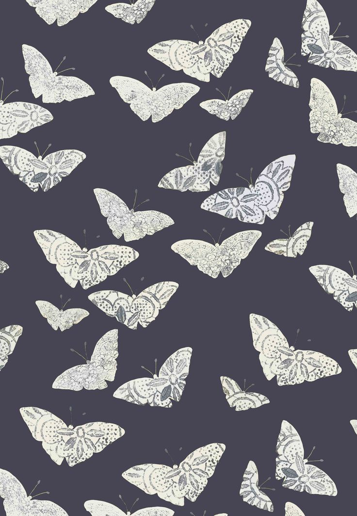 Lacewing Moth colour way