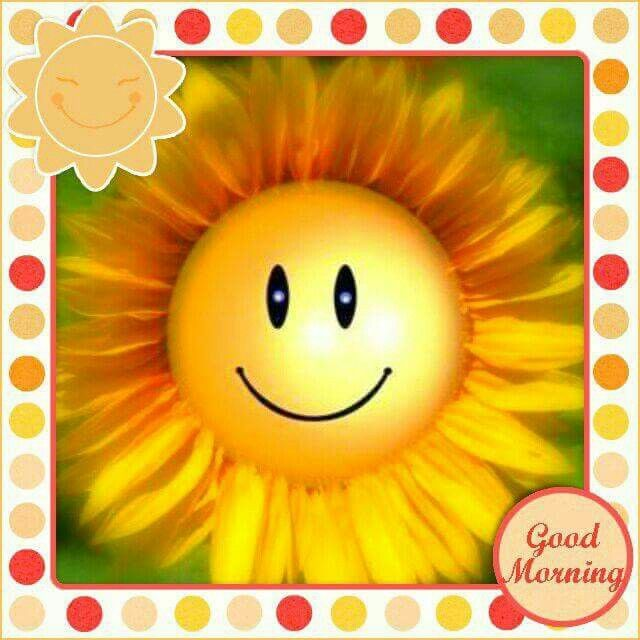 Very Good Morning In German : Best german guten morgen images on pinterest