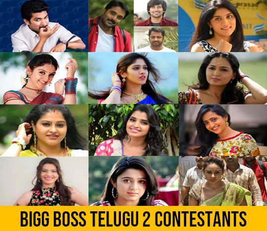 Bigg Boss Telugu Vote (Online Voting Polls) Season 2