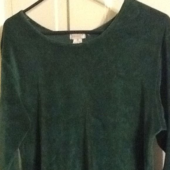 Velvetty feel green long sleeve top Nice,soft and feels like velvet!Dark green long sleeve top.Super comfy and soft! Tops