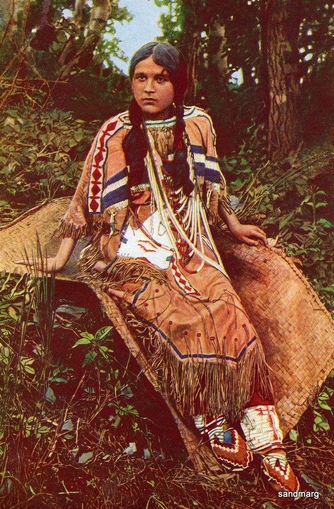 minnesota history ojibwa indians essay 2010-06-02 the ojibwa indians,  yet few people realize the significance of the ojibwa in history  by the turn of the 19th century, the ojibwa lived in michigan, minnesota, ohio, indiana, north dakota, illinois,.