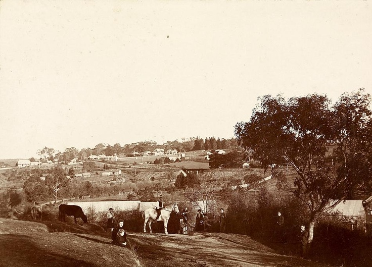 View from 'Willis Vale', Greensborough, circa 1902. Where the shopping centre now stands.