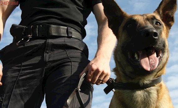 Falta de policiamento aumenta procura por segurança privada no ES
