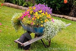 going to do this with an old wheelbarrow my husband was about to throw away: Gardens Ideas, Container Gardens, Lawn Carts, Wheelbarrow, Cute Ideas, Front Yard, Gardens Container, Gardens Projects, Gardens Carts