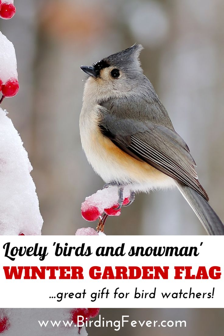 charming birds and snowman winter garden flag gardens flags and