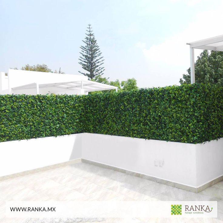 ¡Muros verdes con apariencia 100% natural!  El follaje artificial Ranka mixto es una composición perfecta entre hojas de arrayán, helecho y hiedra. ¿Te gustaría saber más de este modelo?  Cotiza en línea ➜www.ranka.mx Recibe nuestro catálogo de follaje y plantas artificiales, sólo tienes que mandarnos un INBOX con tu nombre y correo