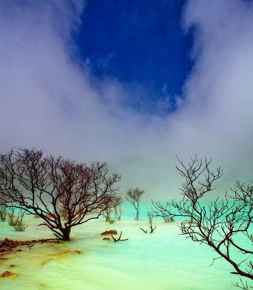Kawah Putih sulphur lakes, Bandung, Indonesia (by George Barker)