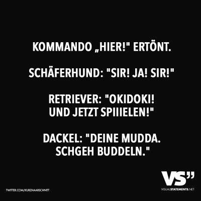 """Kommando """"Hier!"""" ertönt. Schäferhund: """"Sir! Ja! Sir!"""" Retriever: """"Okidoki! Und jetzt spiiielen!"""" Dackel: """"Deine Mudda. Schgeh buddeln."""""""