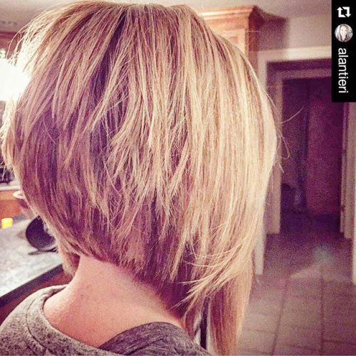 Inverted bob cut with layers