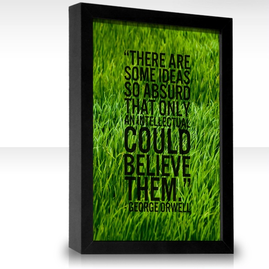 There are some ideas so absurd that only an intellectual could believe them. | Quotes ...
