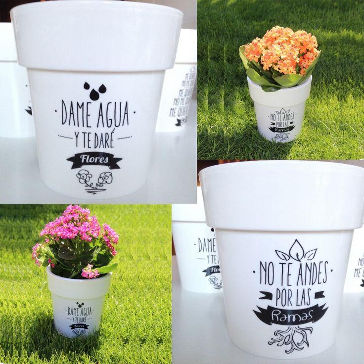 Las 25 mejores ideas sobre macetas pintadas en pinterest for Macetas plantas exterior