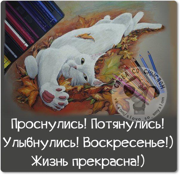 5672049_1416085580_frazochki22 (604x588, 83Kb)