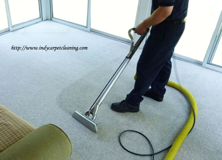 best carpet cleaning services in the world