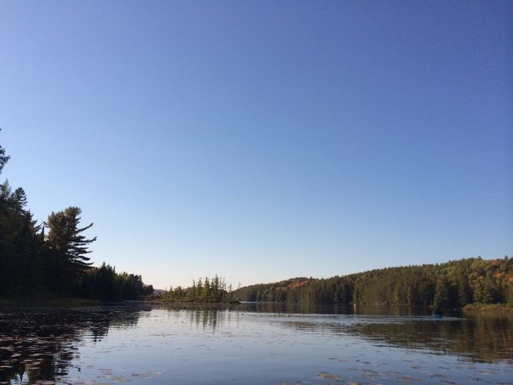 Enjoy the view from Lake Opeongo, @Algonquin_PP in @OntarioParks. @AlgonquinOutfit is a great start for both day trips and backcountry camping! #FallColors #Roadtrip