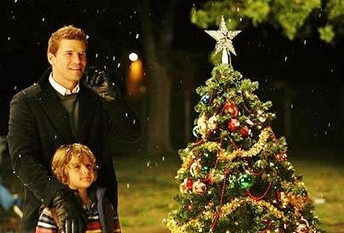 Booth & Parker on Christmas night watching Brennan & her family EPISODE: The Santa in the Slush