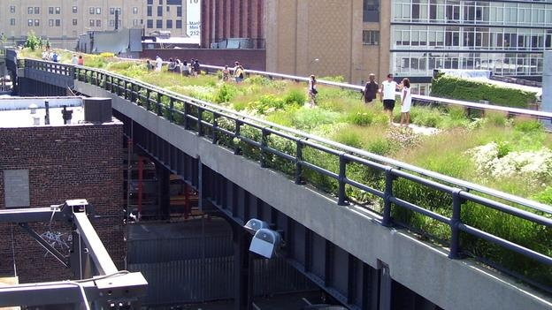 A disused raised railway elevated above the streets on Manhattan's West Side has been converted into a popular park.