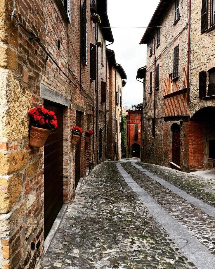 Flowers in Castell'arquato🌹🌹🌹 #castellarquato #flowers #trip #walking #nuvolo #pietra #ciottoli #borgomedievale #borgo #borghiitaliani #collipiacentini #italy #pisarei #pisareiefaso