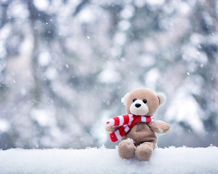 18 best teddy bears images on pinterest teddybear cute teddy teddy bear hd wallpaper desktop hd wallpaper image on thecheapjerseys Choice Image