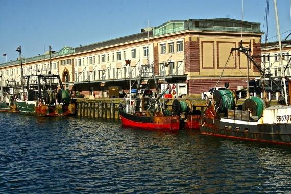 Boston fish pier and no name restaurant great stroll for Fish restaurant boston