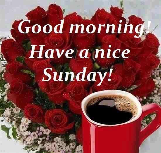 Have A Nice Sunday!