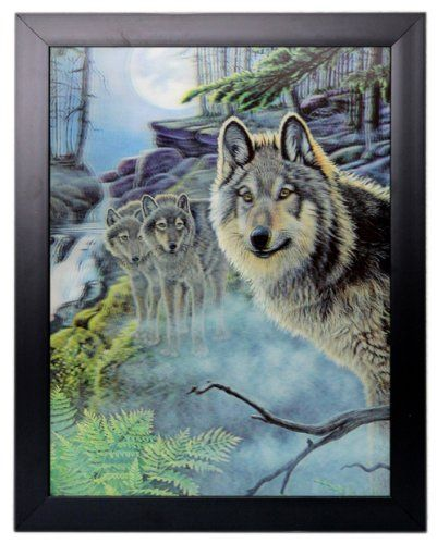 3 Dimensional Colour Picture of a Wolf
