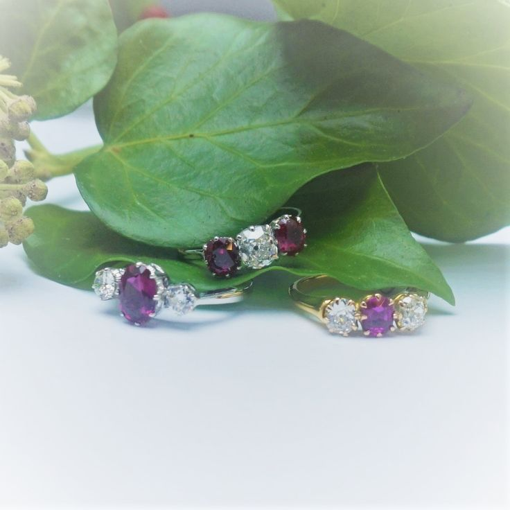 Radiant rubies to warm up a December day. Take a look at our range http://ow.ly/5GlR30h4sAT #rubyrings #antiquejewellery
