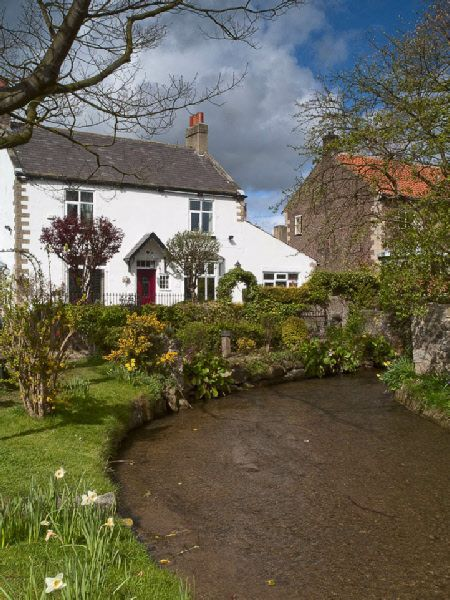 Les 552 meilleures images du tableau the english cottage - Cottage anglais connecticut blansfield ...
