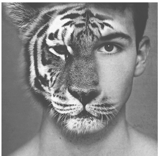 I like the way the tigers face is merged into the humans face. The features are aliened giving the idea that animals and humans are more alike then people think. I think the use of black and white works well on this photo and gives it quite a calm but subtle effect.