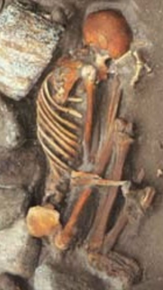 a history of the bog bodies mummies from 8000 bc Were the mysterious bog people human sacrifices  unlike egyptian mummies, the bog bodies owe their state to an accident of chemistry the bogs in which they were buried contain little oxygen.