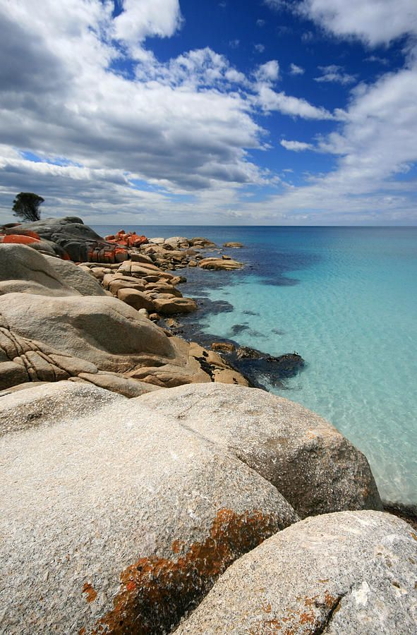 ✯ White Sand and Turquoise Water - Binalong, Bay of Fires, Tasmania, Australia