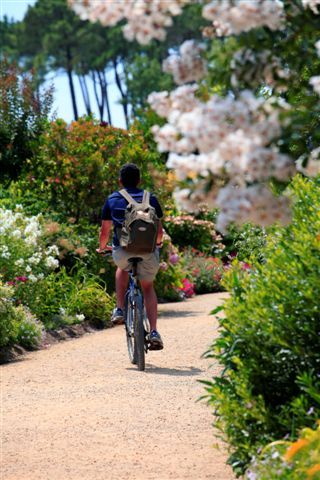 Promenade fleurie - #Mimizan
