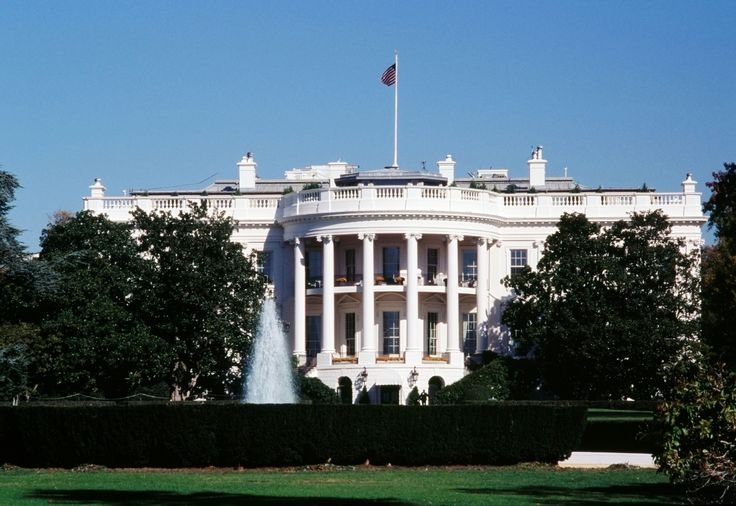 President Trump's Staff Complain of Cockroach, Mice and Ant Infestations in the White House - #livinMicro #FairlyAdept #soWrongItsWrite #President #Trump #Staff #Complain #Cockroach #Mice #Ant #Infestations #White #House