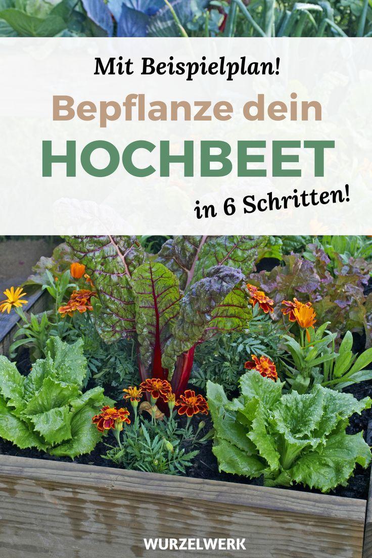 Hochbeet Bepflanzen In 6 Schritten Beispielplan In 2020 Hochbeet Bepflanzen Hochbeet Pflanzen