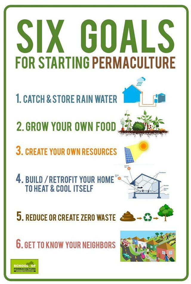 How To Farm A Mountain Top Using Terracing And Permaculture With