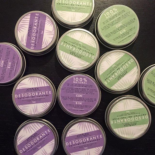 Preparando ando... Desodorantes 100% naturales de lavanda y teatree (melaleuca).  Ingredientes: aceite de coco, cera de abejas, manteca de cacao, bicarbonato de sodio y aceites esenciales de #lavanda o #teatree .  Nada de parabenos, aluminio, antitrasnpirantes ni químicos nocivos para la salud!  #desodorante #desodorantenatural #cosmeticanatural #plantasquecuran #bienestar #saludnatural #cosmeticos #sintoxinas #naturaldeodorant #naturalcosmetics #attalea #botanica