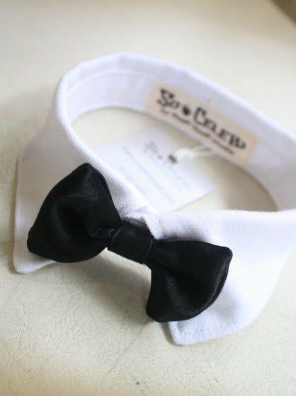 del perro del collar corbata de moño 008-imagen-Ropa o accesorios para mascotas-Identificación del producto:125926168-spanish.alibaba.com
