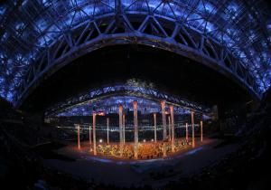 Dmitry Chernyshenko, president of the Sochi Olympic organizing committee, said Saturday that the empty seats in the stadium for Opening Ceremonies were all in our imagination.