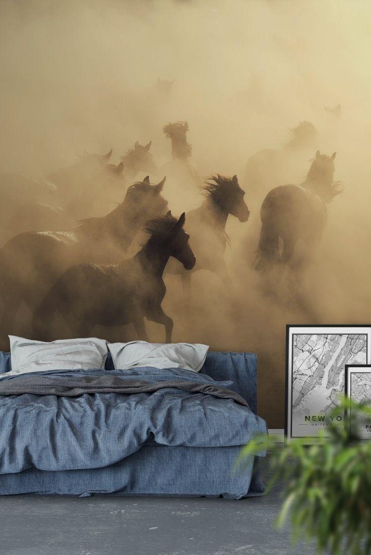 Running horses Wall Mural - Wallpaper