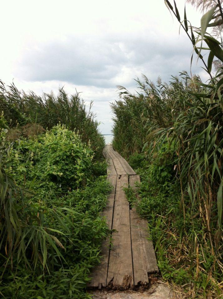 A way to lake Balaton