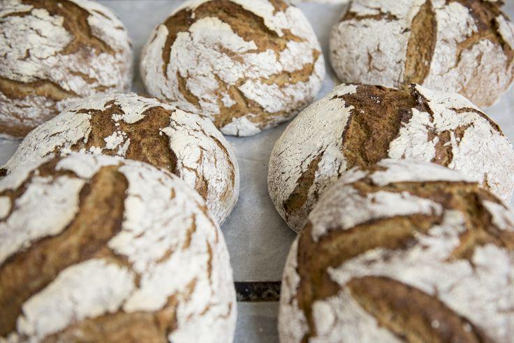 Roggenbrot/Çavdar Ekmeği