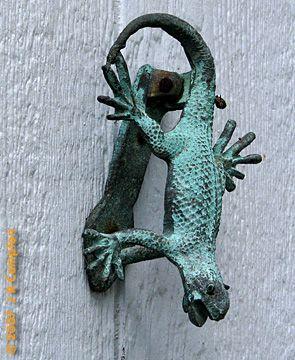 129 best Lagarto, lagarto images on Pinterest | Chameleon, Door ...