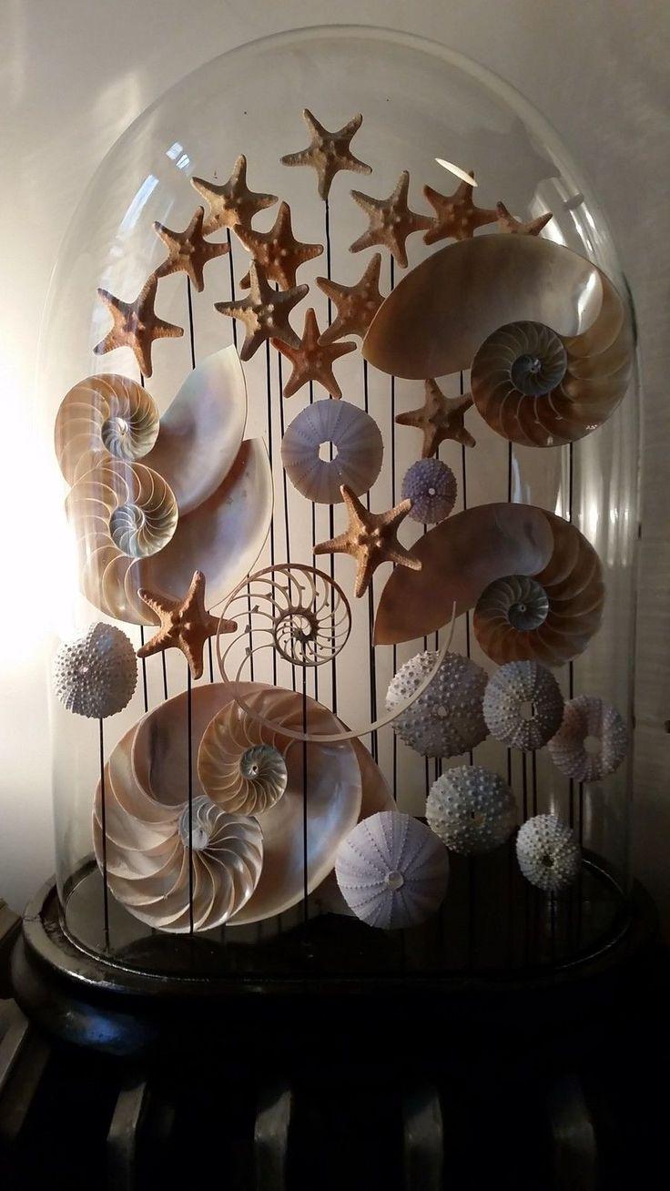 Shell Art Cloche.                                                                                                                                                      More
