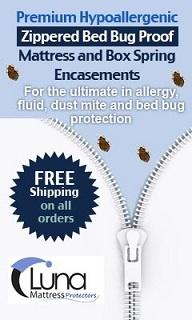 Protection Against Bed Bug Bites